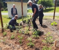 Community Garden_2