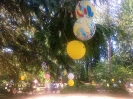 Balloons in the park.